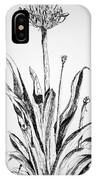 Lily Of The Nile IPhone Case