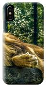 Lion Relaxing IPhone Case