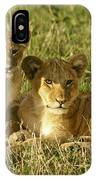 Little Lions IPhone Case