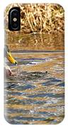Mallards On Pond IPhone Case