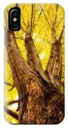 Maple Tree Portrait 2 IPhone Case