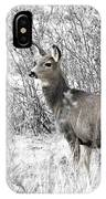 Mule Deer In Winter In The Pike National Forest IPhone Case