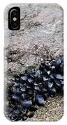 Mussels Rock IPhone Case