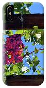 Napa Valley Inglenook Vineyard -2 IPhone Case