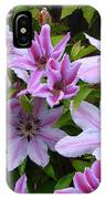 Nelly Moser Clematis IPhone Case