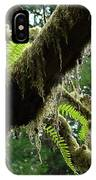Office Art Forest Ferns Green Fern Giclee Prints Baslee Troutman IPhone Case