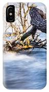 Old Dead Trees On Shores Of Edisto Beach Coast Near Botany Bay P IPhone Case