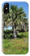 Pelican Island In Florida IPhone Case
