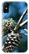 Pine Cones On Dry Branch IPhone Case
