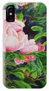 Pink Cascade IPhone Case