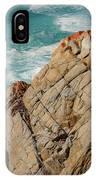Point Lobos California IPhone Case