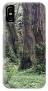 Quinault Rain Forest 3156 IPhone Case