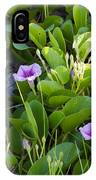 Railroad Vine IPhone Case