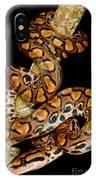Rainbow Boa IPhone Case