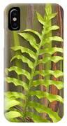 Rainbow Eucalyptus And Fern IPhone Case
