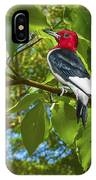 Red-headed Woodpecker IPhone Case
