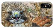 Red-tailed Hawk -5 IPhone Case