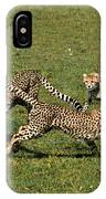 Ring Around The Cheetahs IPhone Case