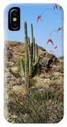Saguaro National Park East Scene Iv IPhone Case