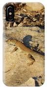 Schreiber's Fringe-fingered Lizard IPhone Case