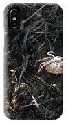 Scuttling To Safety IPhone Case