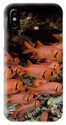 Shoulderbar Soldierfish IPhone Case