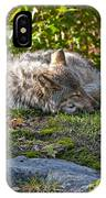 Sleeping Timber Wolf IPhone Case