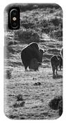 Sunset Bison Stroll Black And White IPhone Case
