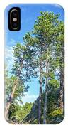 Tall Pine Trees IPhone Case