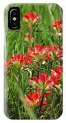Texas Paintbrush IPhone Case