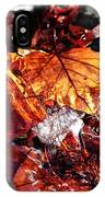 The End Of Fall IPhone Case