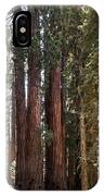 The House Group Giant Sequoia Trees Sequoia National Park IPhone Case