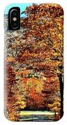 The Richness Of Autumn Treasures IPhone X Case