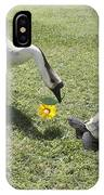 The Turtle And The Goose IPhone Case