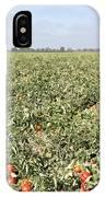 Tomato Field, California IPhone Case