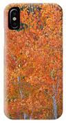 Translucent Aspen Orange IPhone Case