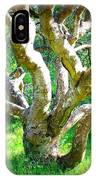 Tree In Golden Gate Park IPhone Case