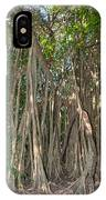 Trees With Aerial Roots At The Coba Ruins  IPhone Case