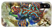 Tropical Fish Mandarinfish IPhone Case