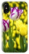 Tulips Garden IPhone Case