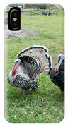 Turkeys In The Yard At Laguna Guerrero IPhone Case