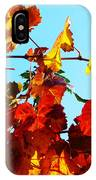 Vineyard 12 IPhone Case