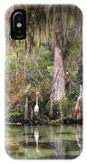Weeki Wachee River IPhone Case