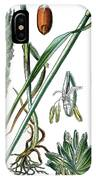 Wheat, Triticum Vulgare IPhone Case