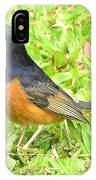 White-rumped Shama IPhone Case