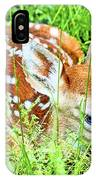 White-tailed. Virginia Deer Fawn IPhone Case