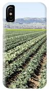 Young Broccoli Field For Seed Production IPhone Case