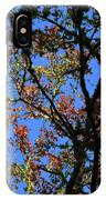 10-15-16--0777 Blue Sky # 3 Don't Drop The Crystal Ball IPhone Case