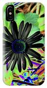 10-15-16--4996 # 2 Montauk Daisy Don't Drop The Crystal Ball IPhone Case