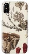 Aquatic Animals - Seafood - Algae - Seaplants - Coral IPhone Case